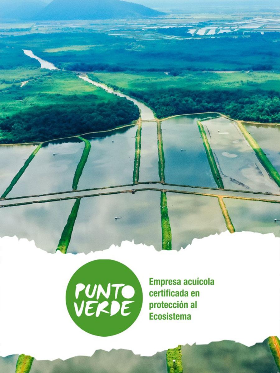 Santa Priscila, primera empresa en obtener certificación Punto Verde
